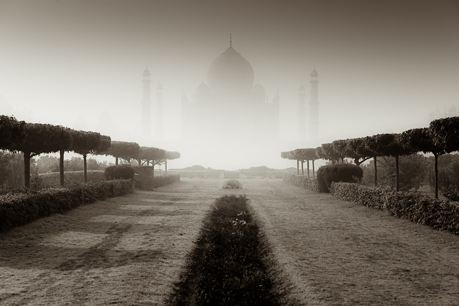 The Floating Palace of Taj - Tomasz Wagner