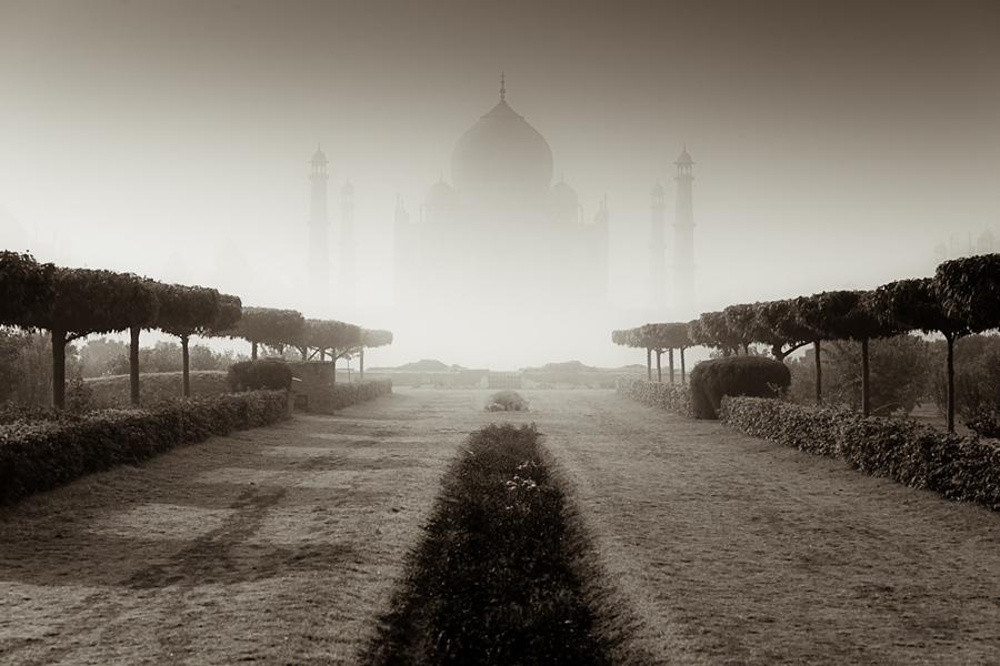 The Floating Palace of Taj - Tomasz Wagner